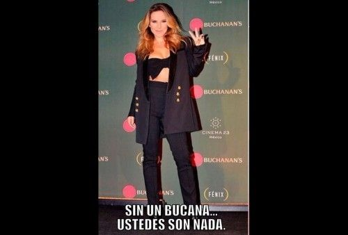 memes-refieren-Chapo-tomar-bucana_MILIMA20160113_0271_21